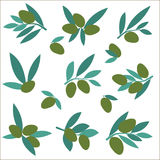 设置橄榄树枝 艺术开花夹子例证结构树 免版税库存图片