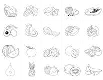 设置热带水果的例证 库存照片