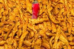 设置熟肉油煎用辣咖喱黄色咖喱胡椒卡宴用红色辣椒特写镜头背景荚烹饪 库存图片