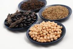 设置用鸡豆、豆、小茴香和黑胡椒 免版税库存图片