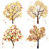 设置秋天结构树 免版税库存照片