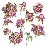 设置精美水彩花 玫瑰牡丹丁香 花束和各自的花装饰的 皇族释放例证