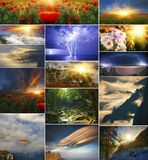 设置自然背景在四个季节内 库存图片