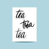 设置茶题字和商标,稀薄的文字 现代书法 免版税库存照片
