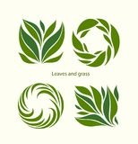 设置草和叶子标签摘要设计 方形和圆的ico 免版税库存照片
