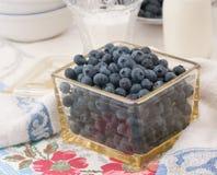 设置表葡萄酒的蓝莓 免版税库存图片