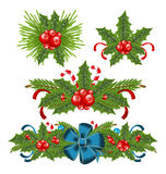 设置霍莉圣诞节装饰的浆果小树枝 库存图片