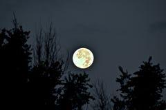 设置8-11-14的超级月亮 库存图片