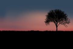 设计合并剪影纹理结构树使用 库存照片