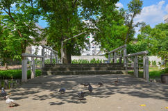 设计庭院庭院哈密尔顿新西兰 规则式园林 庭院春天 免版税库存照片