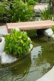 设计庭院庭院哈密尔顿新西兰 图库摄影