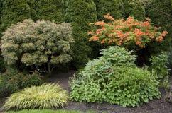 设计庭院庭院哈密尔顿新西兰 库存照片