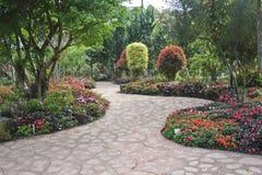 设计用花装饰的庭院 库存图片
