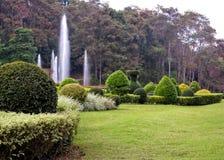 设计用花装饰的风景美丽的庭院 免版税库存照片