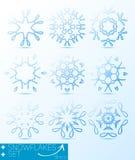 设计的不可思议的雪花冬天集合 图库摄影
