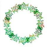 设计的创造性的元素 绿色叶子充满活力的手画水彩花圈  抽象草本框架 植物的细节 向量例证
