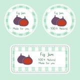 设计的果子汇集 自创自然无花果的标签在绿色和紫罗兰色颜色阻塞 库存图片