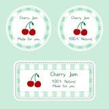 设计的果子汇集 自创自然樱桃果酱的标签在绿色和红颜色 库存照片