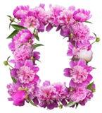 设计的桃红色牡丹欢乐花卉框架 免版税库存图片