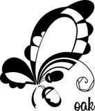 设计的黑白元素 stylizd橡木叶子和橡子 免版税图库摄影