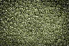 设计的绿色皮革纹理背景 免版税库存照片