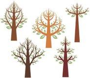 设计系列结构树 免版税图库摄影