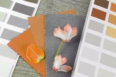 设计组合的织品样片 库存图片