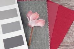 设计组合的织品样片 免版税库存图片