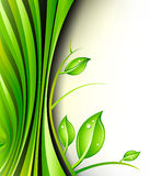 设计绿色植物 库存照片