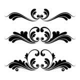 设计花卉图象装饰品 免版税库存照片
