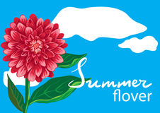 设计花卉图象 免版税库存图片