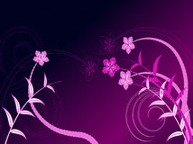 设计花卉漩涡向量 库存例证