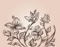 设计花卉现代 免版税库存照片
