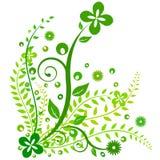 设计花卉绿色 免版税库存照片