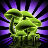 设计蘑菇 向量例证