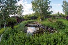 设计高例证横向计划图表分解力 有鱼池的夏天庭院在一个晴天 库存照片
