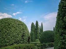 设计高例证横向计划图表分解力 绿色自然背景和美丽的庭院用常青树装饰 免版税图库摄影