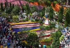 访客向滨海湾公园在新加坡敬佩美好的郁金香显示 库存图片