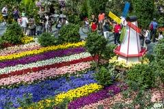 访客向滨海湾公园在新加坡敬佩美好的郁金香显示 图库摄影