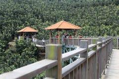 访客在柚子种植园木桥监视使用  免版税库存图片
