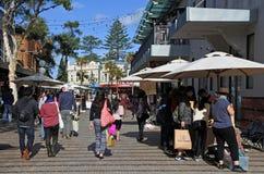 访客在男子气概的悉尼新南威尔斯澳大利亚 库存图片