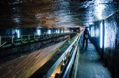 访客在盐矿图尔达,科鲁,罗马尼亚 免版税库存照片