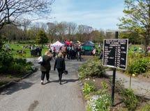 访客在都伯林市享受菲尼斯公园秀丽,有它的春天花和郁金香花堆的 免版税库存图片