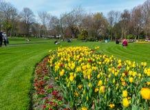 访客在都伯林市享受菲尼斯公园秀丽,有它的春天花和郁金香花堆的 图库摄影
