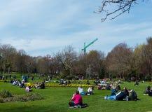 访客在都伯林市享受菲尼斯公园秀丽,有它的春天花和郁金香花堆的 免版税库存照片