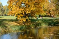 访客在Olexandria公园 图库摄影