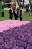访客在TIVOLI庭院里在营业日 图库摄影