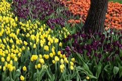 访客在TIVOLI庭院里在营业日 免版税图库摄影