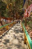 访客攀登陡峭的楼梯 库存图片