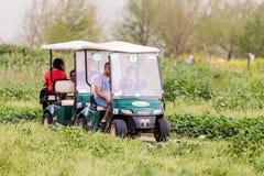 访客沿在Hula湖自然保护的一条电动车道路驾驶在Yesod哈马`丙氨酸解决附近在以色列 免版税库存图片